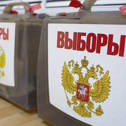 Курские общественные наблюдатели готовятся к выборам