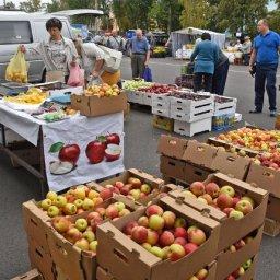 В Курске стартовали осенние сельскохозяйственные ярмарки