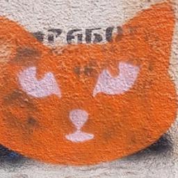 Курская полиция прокомментировала движение «Коты против наркоты»