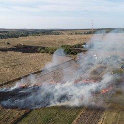 В Курской области с помощью беспилотника смогли предотвратить крупный пожар